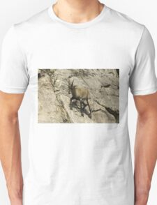 Ibex on a cliff T-Shirt