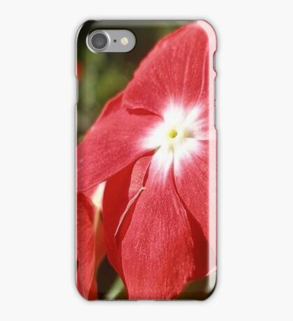 Close Up Of A Red Busy Lizzie Flower iPhone Case/Skin