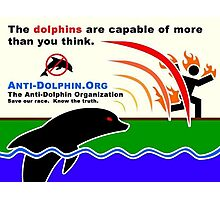 dolphins control everything Photographic Print