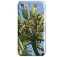 Some Fruit Harvested? iPhone Case/Skin