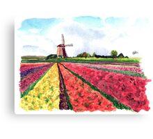 Holland flowers Canvas Print
