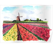 Holland flowers Poster