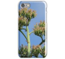 Fruit of the Century Plant iPhone Case/Skin