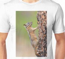 Chipmunk Vertical Pushups Unisex T-Shirt