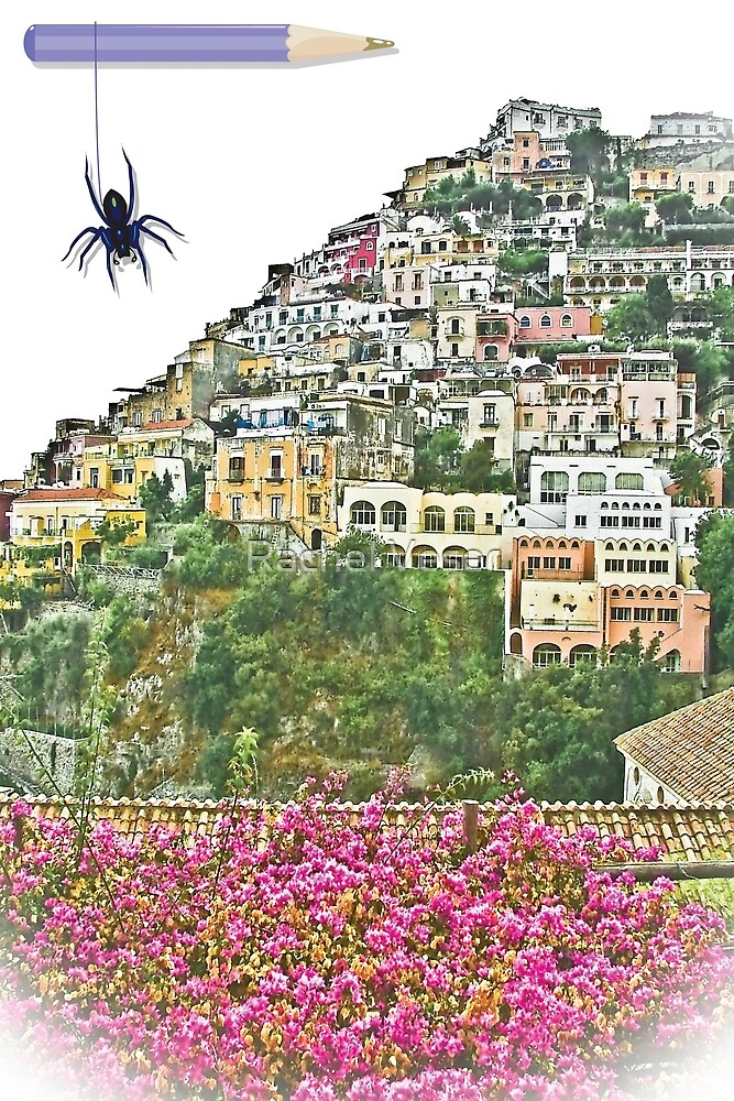 ... a little spider in Positano / Italy  ( 1 ) by Rachel Veser