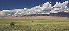 Grass, Sand, Rock, Sky by Tamas Bakos