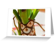 Plant Expressions X1 Greeting Card