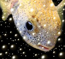 *Fish Bubbles* by Darlene Lankford Honeycutt