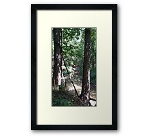 Raisbeck Park #2 Framed Print
