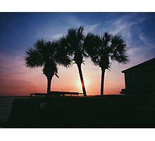 3 Tree Sunset Photographic Print
