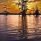 Cajun Sunset by cclaude