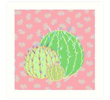 Watermelon Cactus Art Print