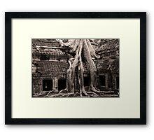 Ta Prohm Temple in Cambodia Framed Print