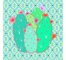 Pear Cactus Photographic Print