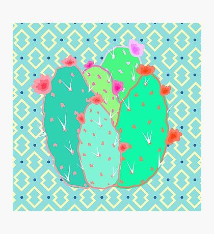 Pear Cactus Photographic Print