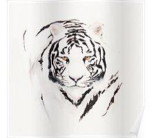 Tiger it Poster