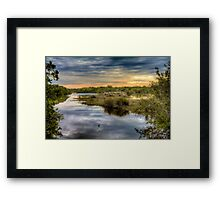 Ding Darling Bailey Tract Framed Print