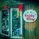 Finicky Feline by Yukondick
