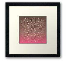 Natural Geometry II Framed Print