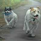 The Race Is On by Pam Humbargar
