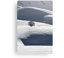 Lonely tree in the snow Canvas Print