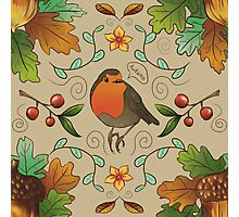 Autumn Robin Patern Photographic Print