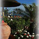 The beautiful Miliscola Beach ( Miliscola / Bacoli / Italy ) ~ 4 by Rachel Veser