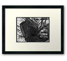 willow 2 Framed Print