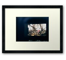 Through the viewfinder - winter blossoms Framed Print