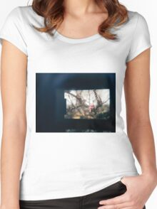 Through the viewfinder - winter blossoms Women's Fitted Scoop T-Shirt