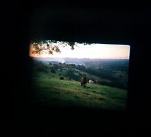 Through the viewfinder - Byron ranges by strangerandfict