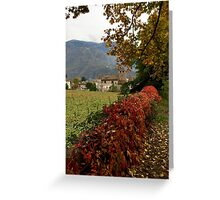 Autumn in Bolzano Greeting Card