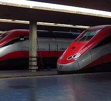 Trains, Florence Central Station by wiggyofipswich