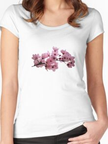 Cherry Blossoms on a Branch Women's Fitted Scoop T-Shirt
