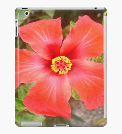 Head On Shot of a Red Tropical Hibiscus Flower iPad Case/Skin