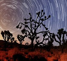 Star trails over Mojave National Preserve by Alex Preiss