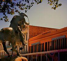 Pony Express by Barbara  Brown