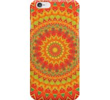 Mandala 78 iPhone Case/Skin