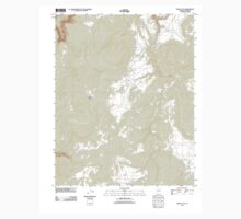 USGS TOPO Map Arizona AZ White Clay 20111026 TM Kids Tee