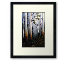 Gumtrees After The Rain Framed Print