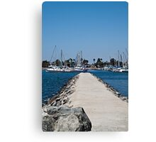 A Simple Path to the Lake Canvas Print