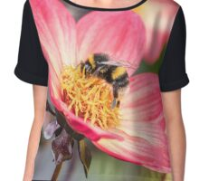 Bumble Bee collecting pollen from a flower Chiffon Top