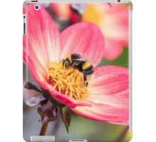Bumble Bee collecting pollen from a flower iPad Case/Skin