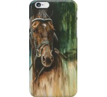 Warmblood Passion iPhone Case/Skin