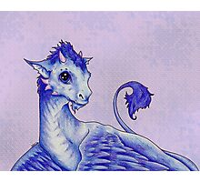 Baby Dragon Photographic Print