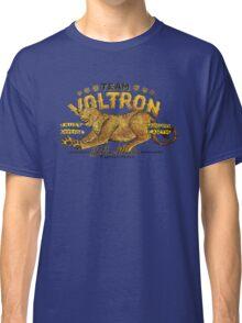 Yellow Paladin Vintage Shirt Classic T-Shirt