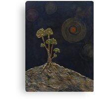 Rising from the rocks Canvas Print