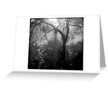 Lightfall Greeting Card
