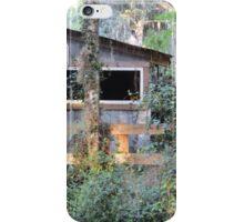 Alpine Groves Park - St. Johns County, FL iPhone Case/Skin