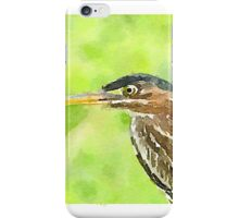 Green Heron iPhone Case/Skin